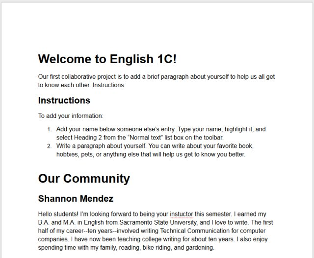 Screenshot of Meet Our Class Document